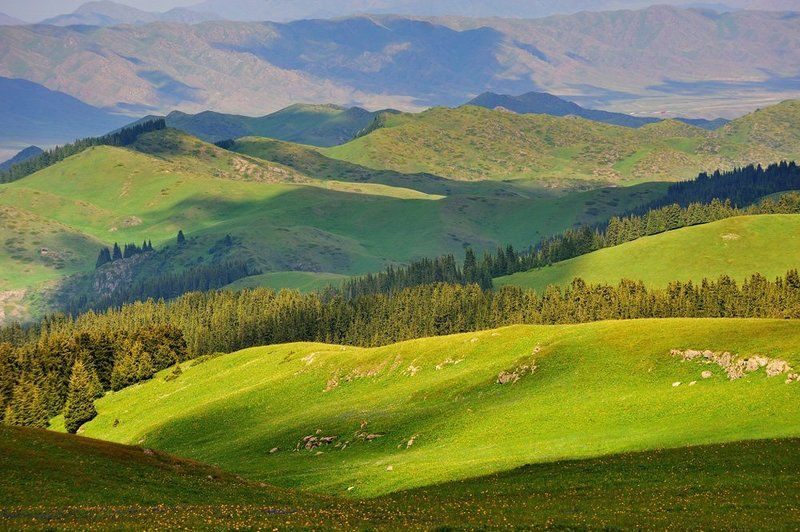 табан карагой, плато, казахстан плато Табан-Карагойphoto preview