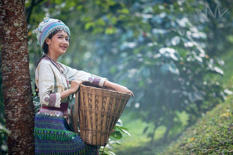 portrait,hmong,thailand,asia,coffee,female,woman,beautiful, Hmongphoto preview
