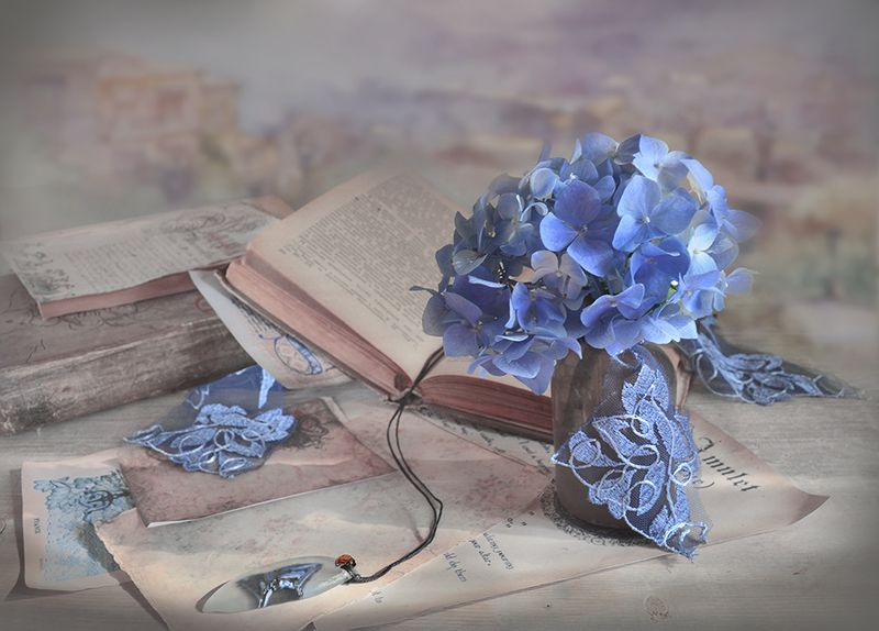 натюрморт книги букет утро винтаж ретро голубая гортензия письма амулет Амулетphoto preview