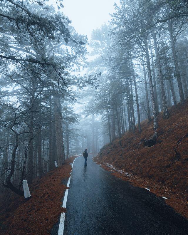 крым, ялта, никитская яйла, ай-петри, уч-кош, романовское шоссе Романовское шоссеphoto preview