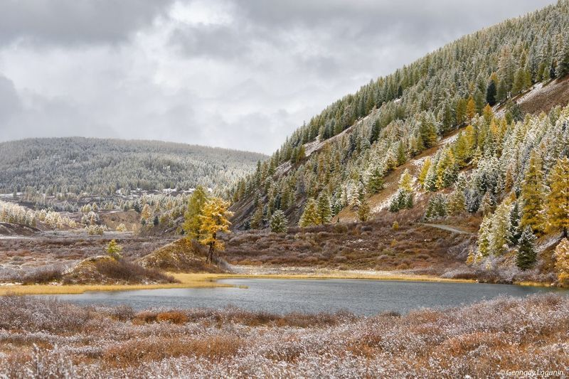 алтай, altai, осень, autumn, озеро, lake Первый снегphoto preview