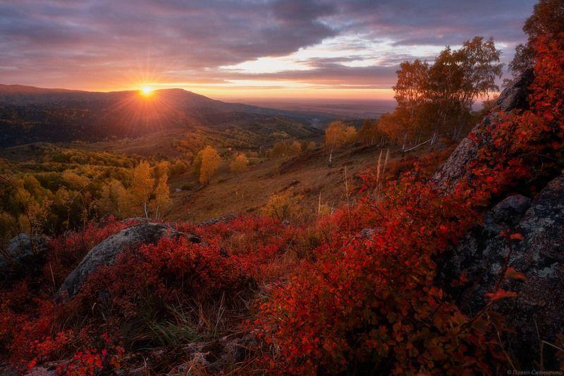 алтай, белокуриха, осень, закат, облака, солнце, горы, лес, пейзаж, свет Краски осеньphoto preview