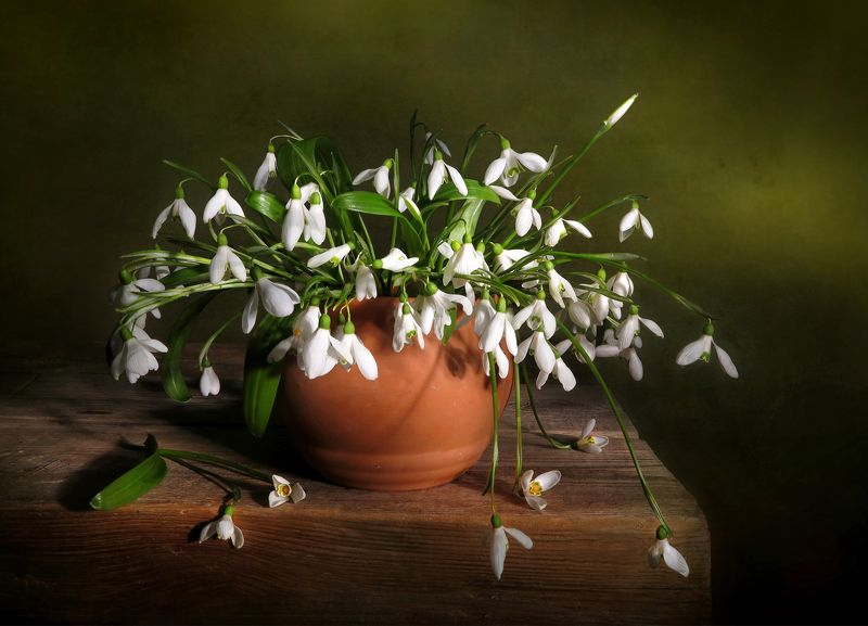 натюрморт,весна,подснежники Подснежникиphoto preview
