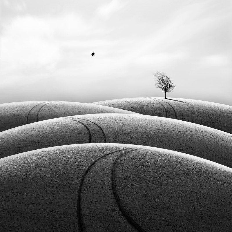#35photo #surrealart#photoshop#ps_fantasy#art_minimal #bnw_dream #photography#minimalism#conceptual#fineart #instagram#ps_dreams#bnwminimalismmag#art_digital #ir_photographer#ir_aks#minimal#canon#blackandwhite#bnw#surreal#hadimalijani#art#fantastic_earth# Far awayphoto preview