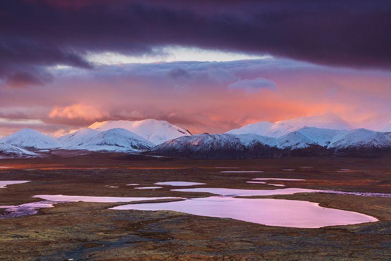 якутия, индигирка, хребет черского, тундра, отражения Отражения тундрыphoto preview