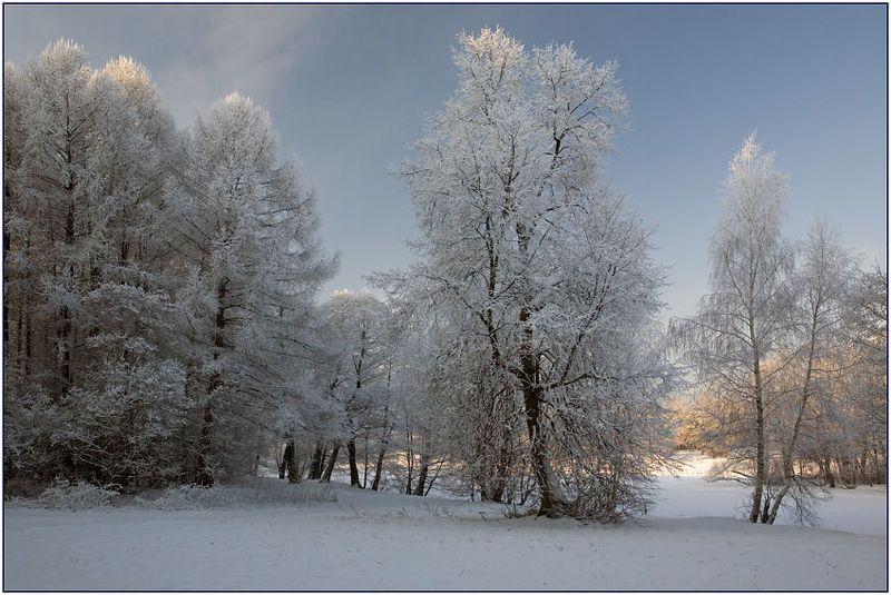 зима, мороз, иней Пушистая зимаphoto preview