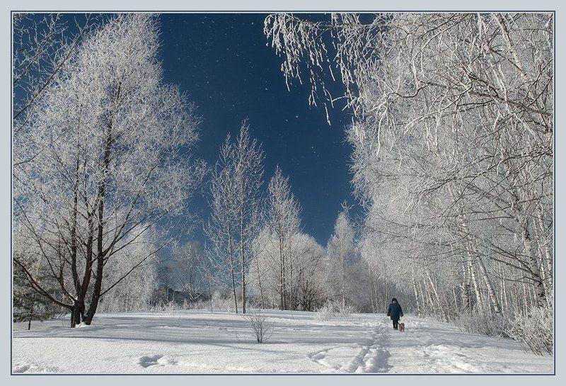 небо, зима, красивые деревья, женщина с собачкой. Такой прекрасный зимний день!photo preview