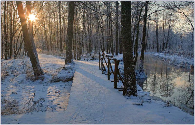 зима, мороз, солнце Зимнее солнцеphoto preview