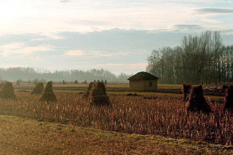 сербия, поля, сено Сербия #2photo preview