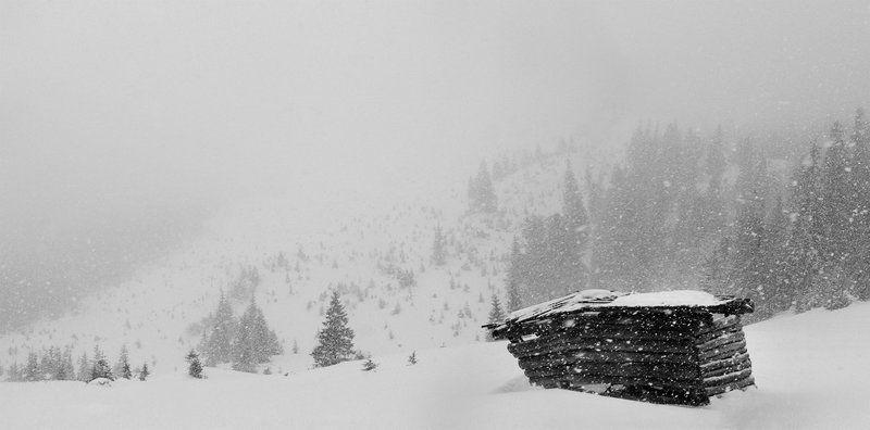 карпаты, природа, пейзаж, снег, туман, панорама С Наступающим Новым Годом!photo preview