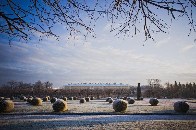 петергоф, в, январе Петергофphoto preview