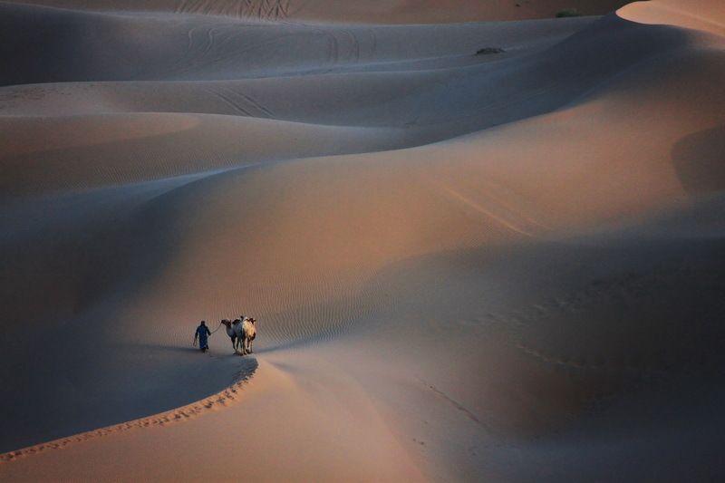 Desert-2photo preview
