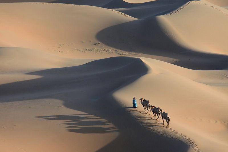 Desert-3photo preview