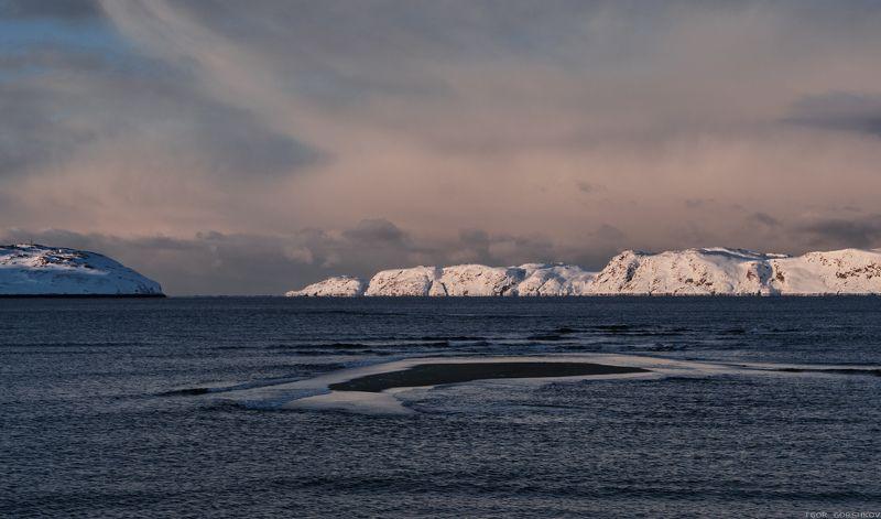 баренцево море,териберка,вечер,сумерки,волны,зима,крайний север,заполярный круг,пейзаж,россия,берег,закат,мороз,холод,остров,снег,скалы,залив Суровая северная красота.photo preview