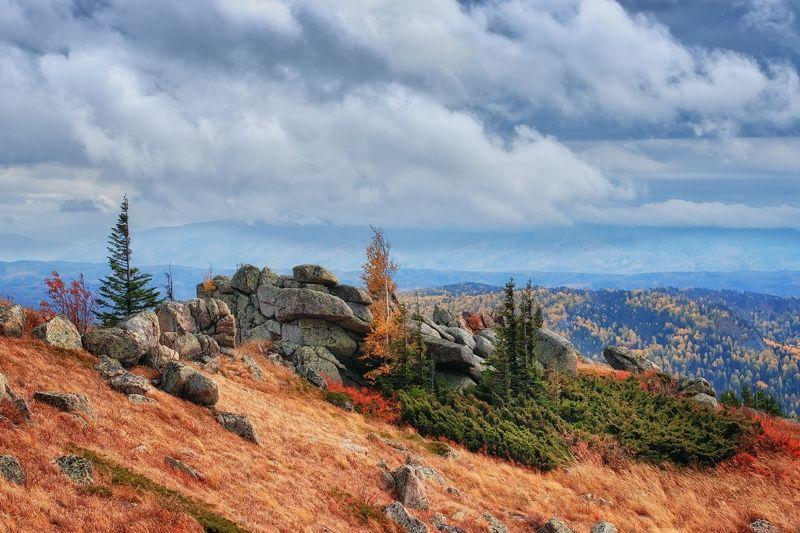 алтай, колывань, синюха Ивагуми в горахphoto preview
