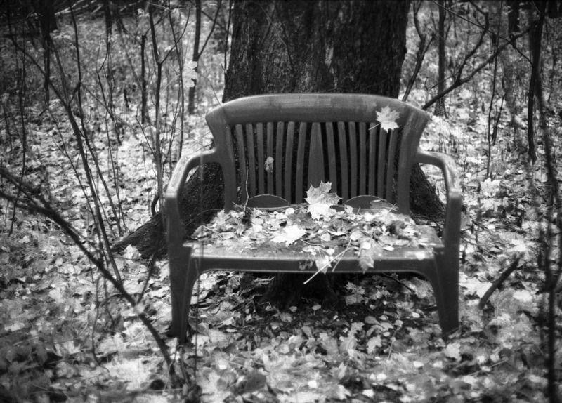 Одиночество (Сокольники. Осень)photo preview