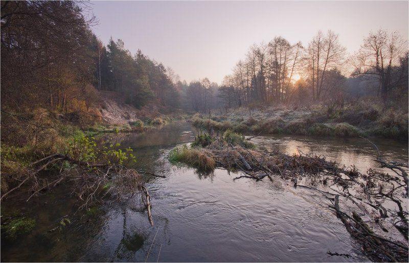 рассвет, река, осень, лес Холодный рассветphoto preview