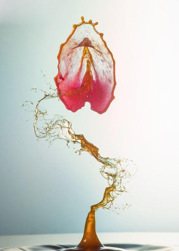 waterdrop,splash,abstract,liquid,art,nacro S dropsphoto preview
