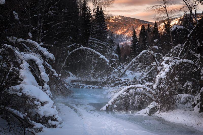 #алтай #река #республикаалтай #зима #горы #зимавгорах #устькокса #сибирь #природаалтая За поворотом, во глубине лесного лога...photo preview