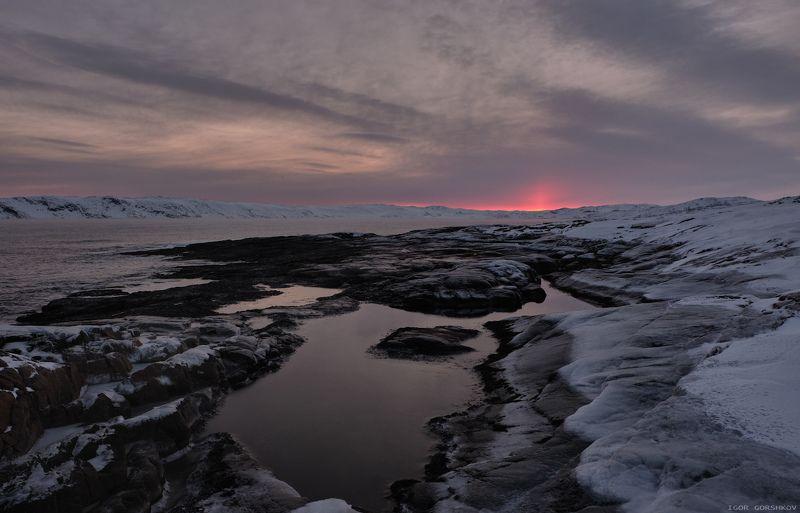баренцево море,териберка,утро,зима,крайний север,заполярный круг,пейзаж,россия,,берег,снег,лёд,рассвет,камни,солнце, Рассветный огонёк.photo preview