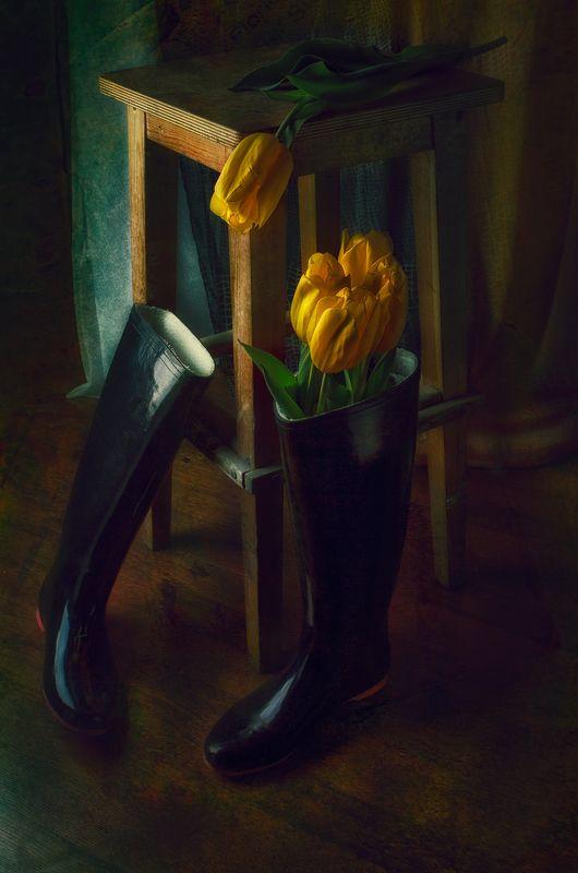 тюльпаны, сапоги, табуретка, натюрморт, separatedphoto preview