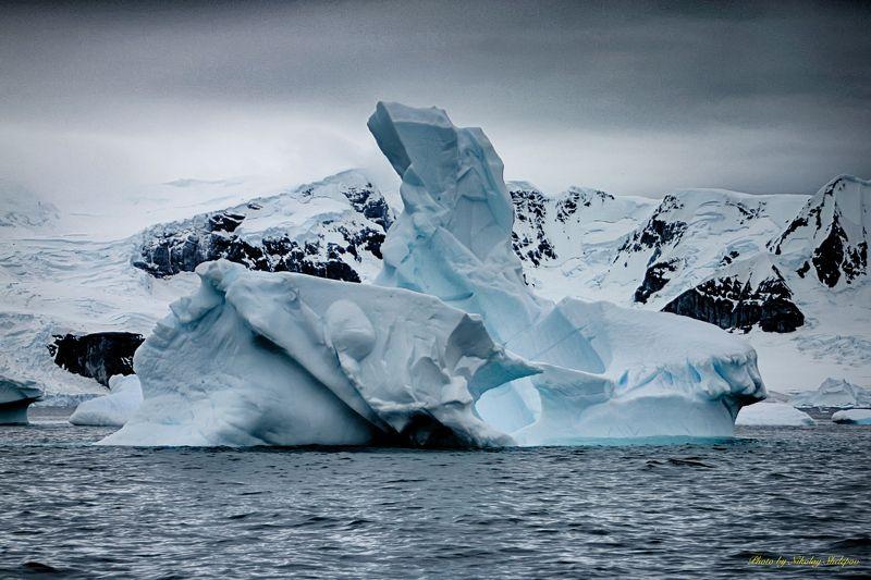 Антарктида 41photo preview