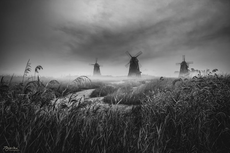 windmill forest b&w cloud path for morning moody Korea landscape  New dayphoto preview