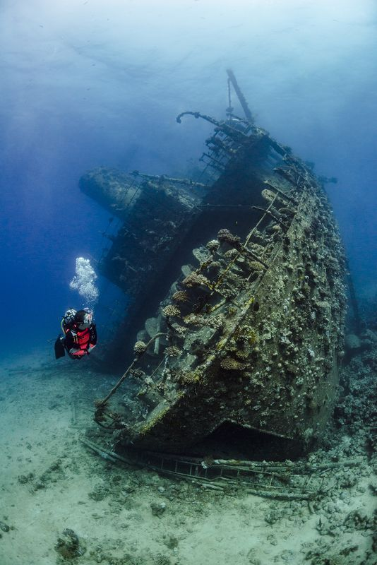 underwater, wreck, underwater photography, Giannis D, Red Sea Giannis Dphoto preview
