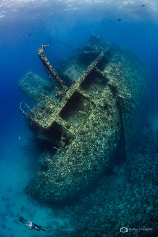 underwater, photography, wreck, egypt, magic filter, ship, model ***photo preview