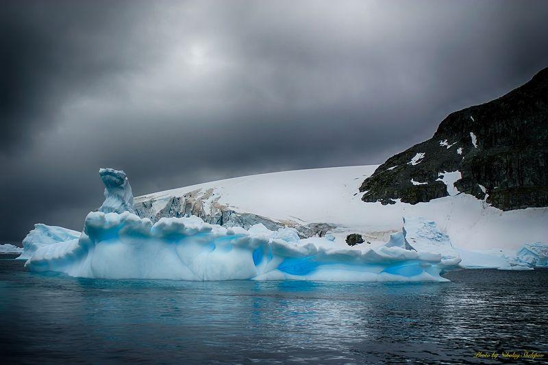 Антарктида 42photo preview