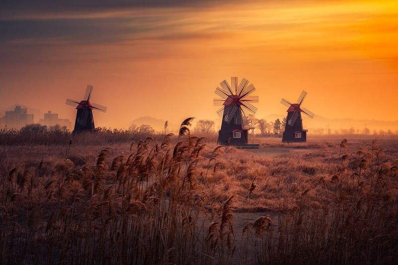 windmill morning spring fog sunrise clouds wind focus_stacking focus color light korea swingphoto preview