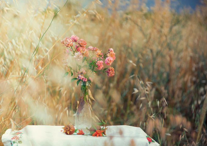 stillife,flower,roses,rural,impression rural impressionphoto preview