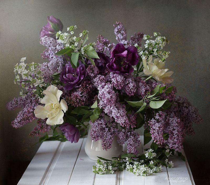 натюрморт, сирень, тюльпаны, свет, весна, цветение, букет, цветы, алина ланкина, still life ***photo preview