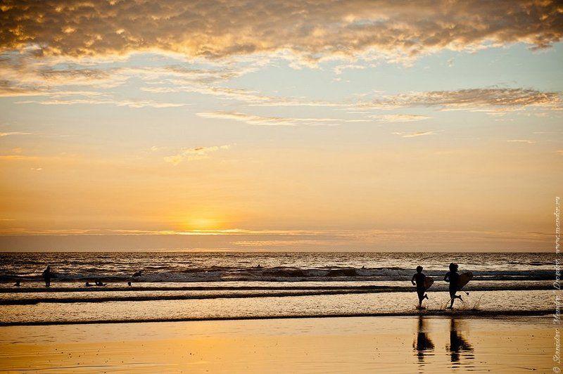 коста рика, путешествие, океан, закат, животные, travel, ocean, nature, animals Costa Rica. Действительно богатый берег.photo preview