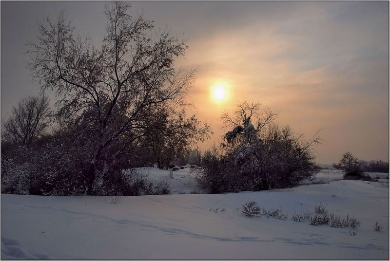 природа Февральским вечерком...photo preview