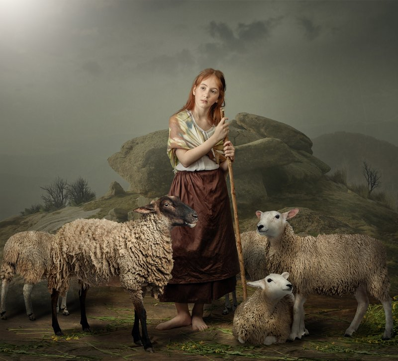 Young girl herding sheepphoto preview
