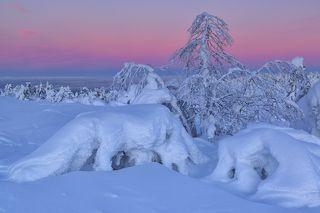 Снежные края...