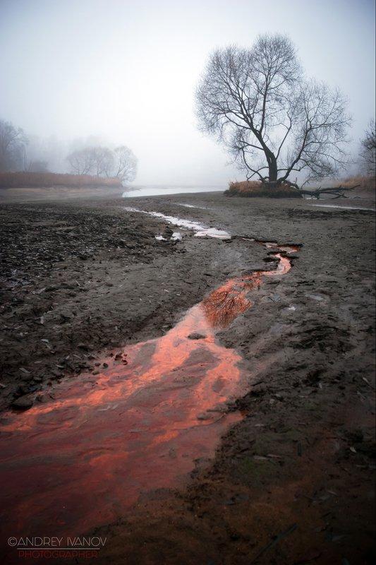 пейзаж природа туман дмитров Багровые рекиphoto preview