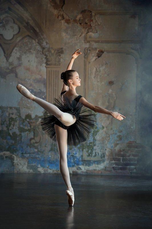 ballet  ballerina  girl  dance  dancer  little ballerina  studio ballet childhoodphoto preview