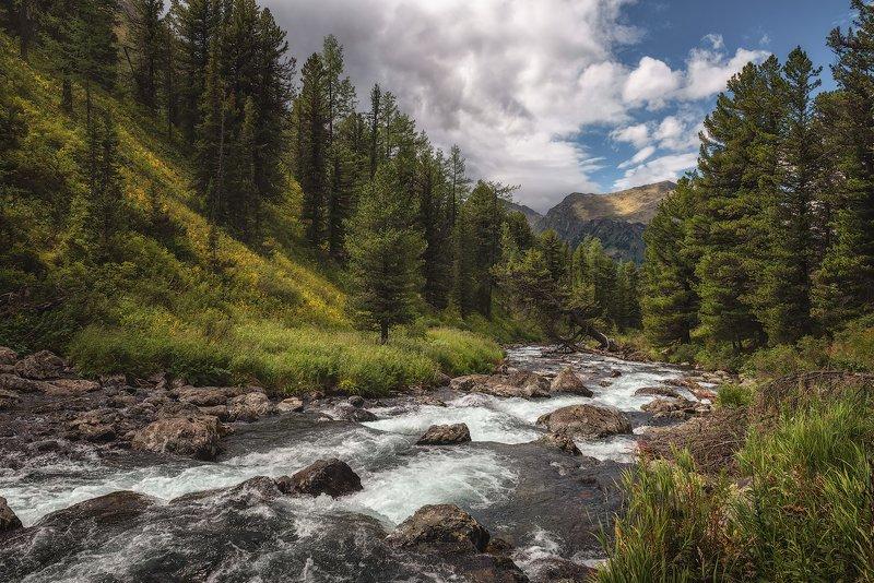 Реки приют таежныйphoto preview