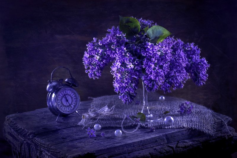 сирень, весна, аромат, настроение, атмосфера весны, время весны Время сирениphoto preview