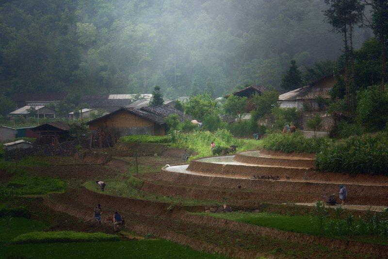 vietnam, Деревенские будни. Северный Вьетнам.photo preview