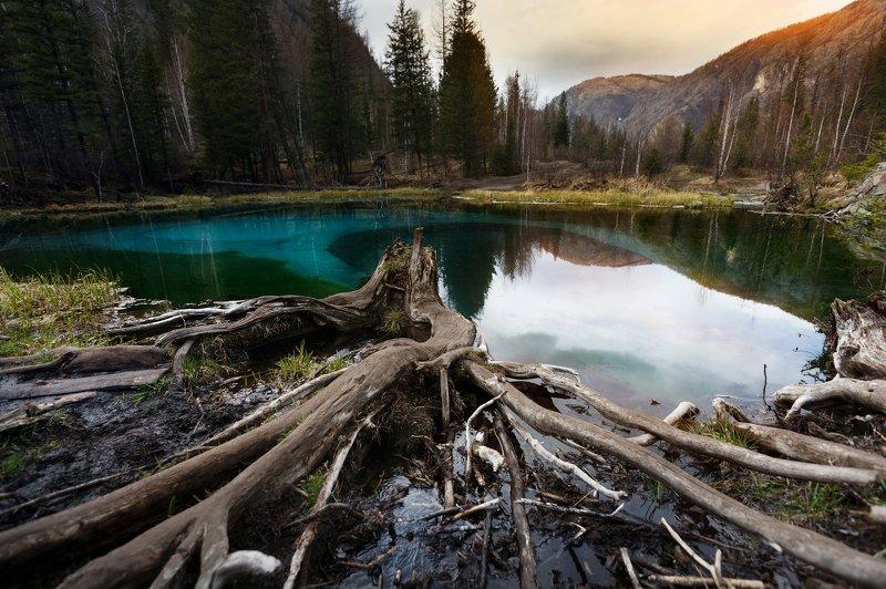 #озеро #алтай #горы #свет #лес #природа #пейзаж #nature #forest #lake #light Таинственное озероphoto preview