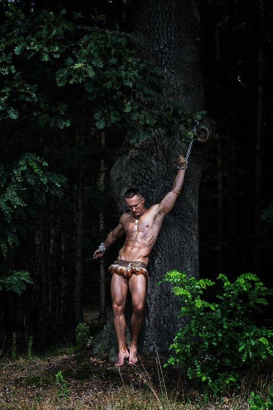 арт, , nude, ню, модель, model, man, человек Кароль в цепях | Karol in chainsphoto preview