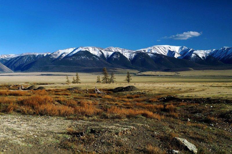 природа  алтай  горы пейзаж путешествие весна тени  май курай северо-чуйский хребет За Кураем...photo preview