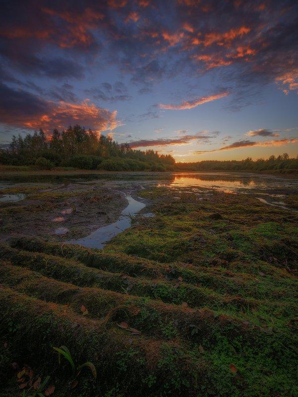 Сентябрьский закат на болотахphoto preview