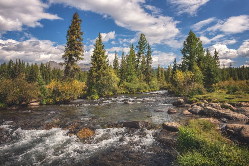 Мелодия горной рекиphoto preview