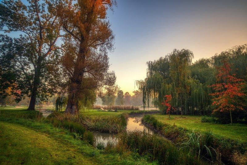 природа пейзаж вода туман утро рассвет осень небо солнце деревья отражения озеро парк Тишина...photo preview