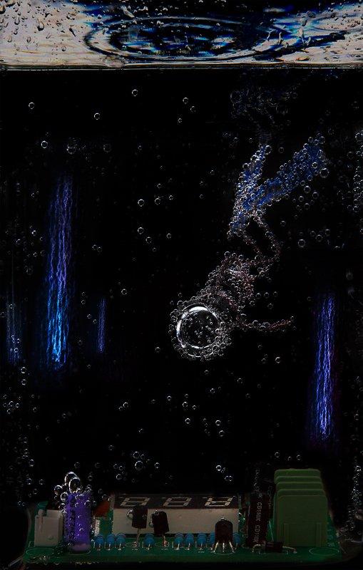 лампочка, стекло, вода, креатив, концепт Diverphoto preview