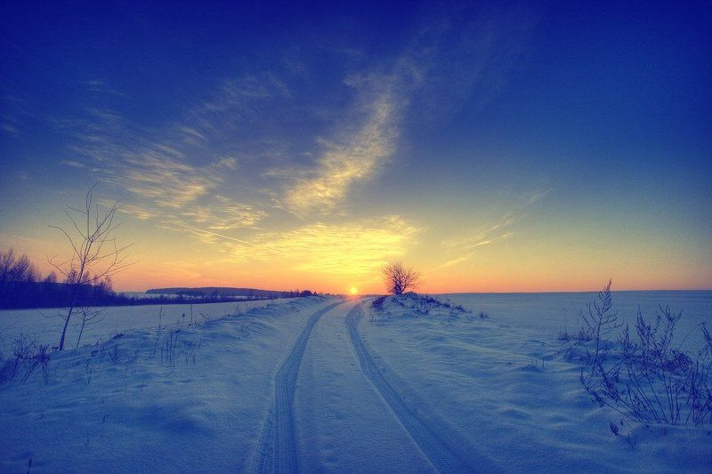 закат, зимняя, дорога, кусты, солнце, снег | Зимняя дорога |photo preview